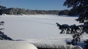 Brandy Lake Winter