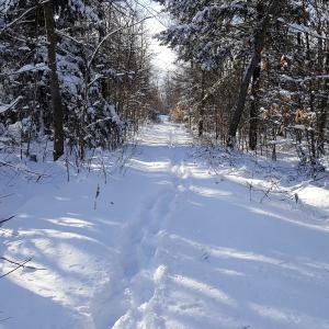 dec-trail